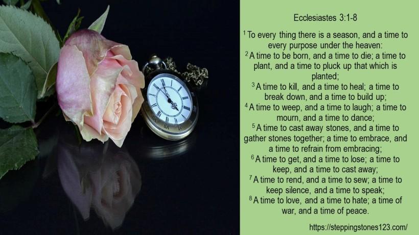 verse Ecclesiastes 3 and 1 thru 8